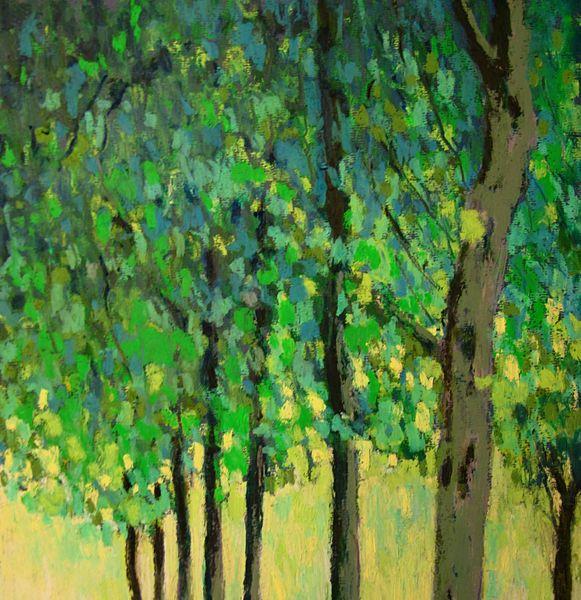 arbres (la garenne) mai 2013