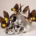 Philippe Pasqua, Crâne aux papillons. Crédit : Jean-Alex Brunelle / Adagp, Paris 2010