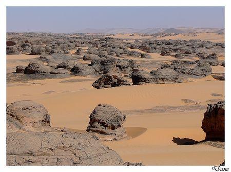 a_desert8