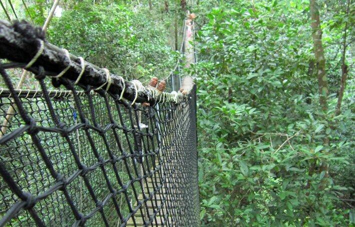 Le zoo de macouria le mercredi 13 mars andr a et mat o - Bruit qui attire les chats ...