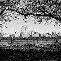 Joggeurs dans Central park, NY.