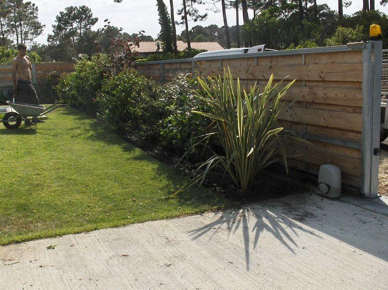 plantation de haie vari e album photos antoine et ses jardins. Black Bedroom Furniture Sets. Home Design Ideas