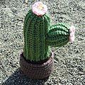 Cactus au crochet