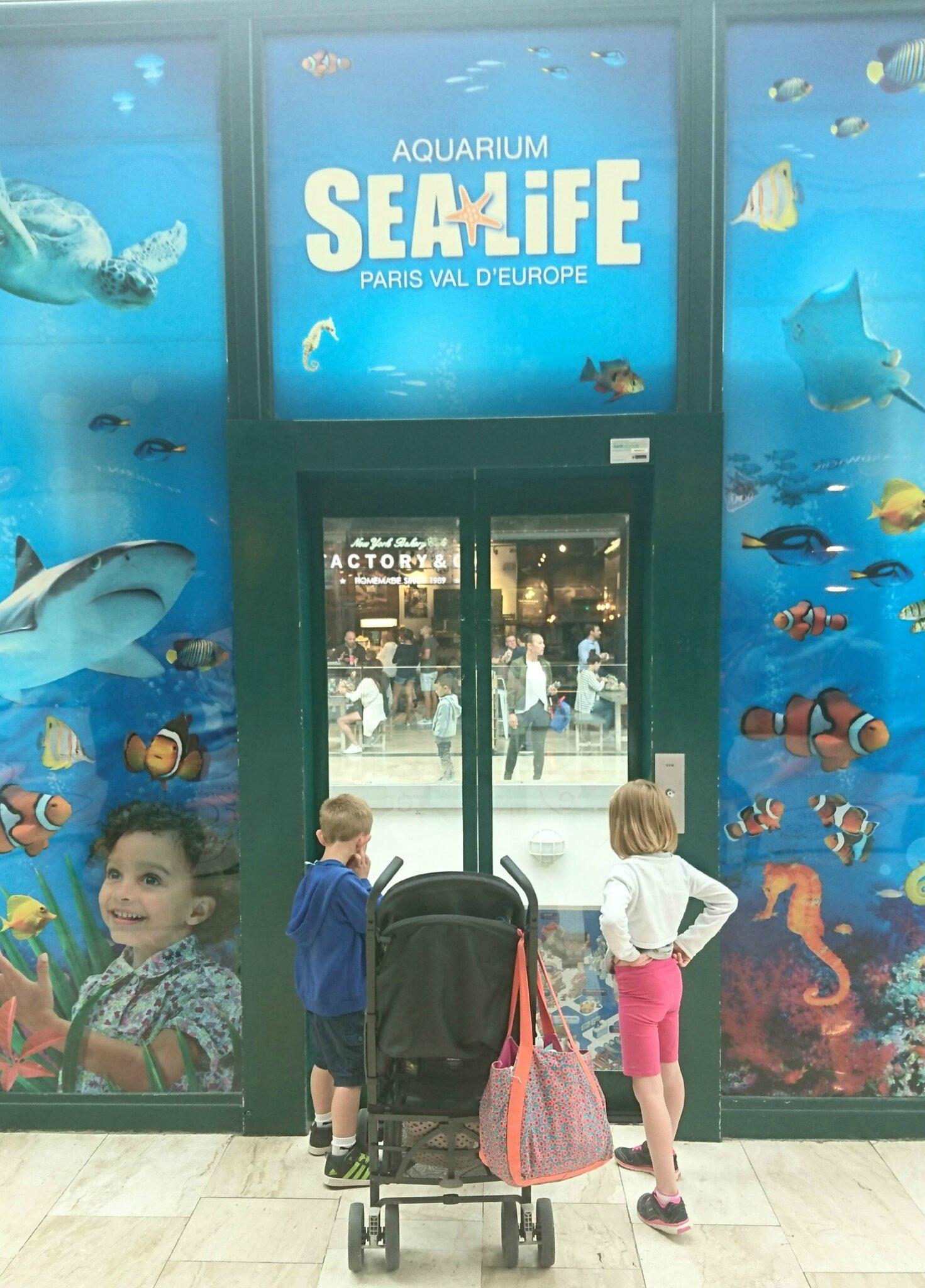 A la découverte des nouvelles animations de l'aquarium SEA Life