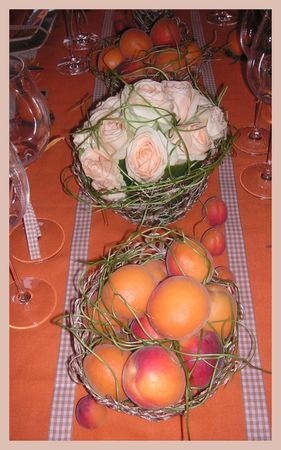 2009_07_07_table_abricots3