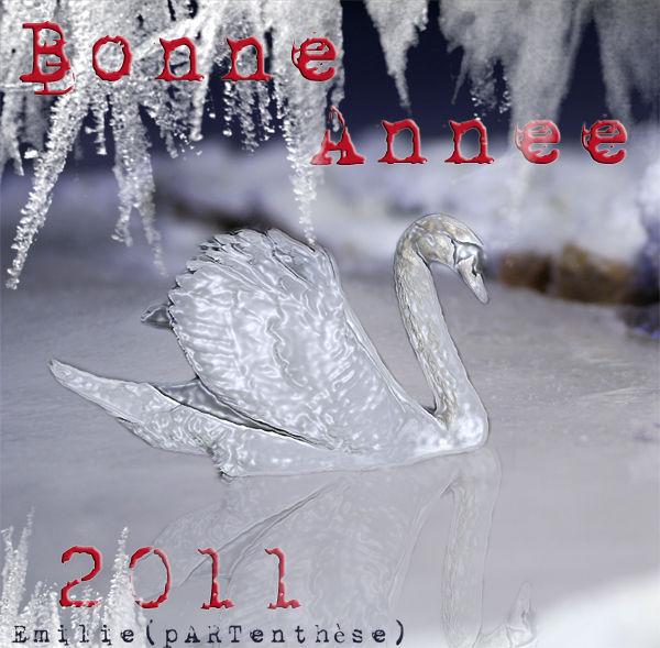 bonne_ann_e_petite