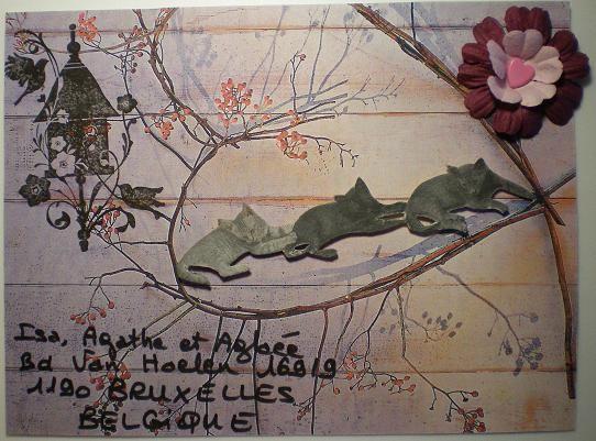 118~Chats pour Isa Agathe et Aglaée