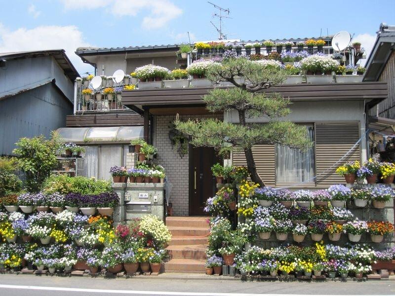 Japon 2010 068