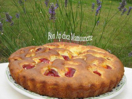 Gâteau aux prunes rougeâtres sauvages de juillet 005