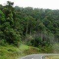 Route gabonaise