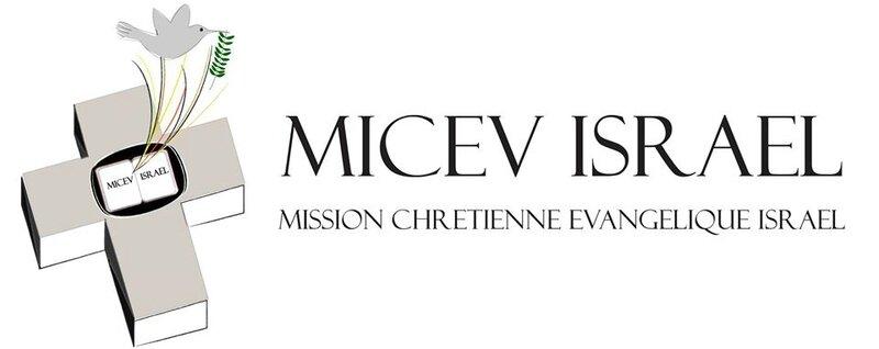 micev logo