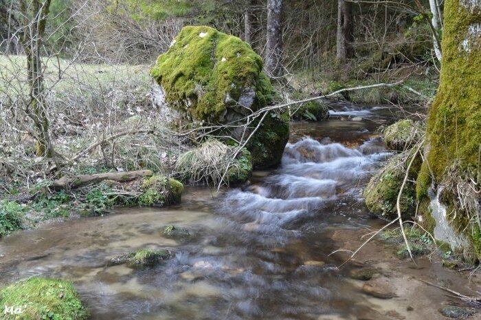 180106_ruisseau_Leoncel_1