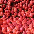 Des fraises des fraises et encore des fraises