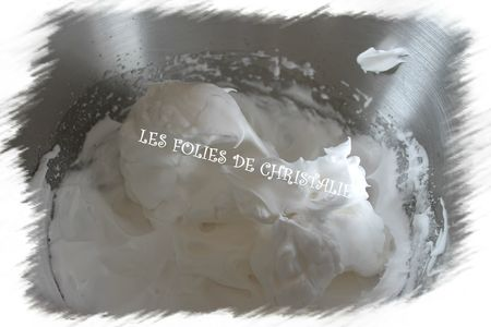 Macarons du chocolatier 3