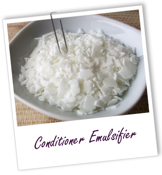 FT_trombone_conditionner-emulsifier