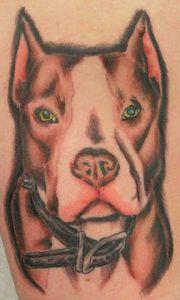 dog_tattoo_11369289192728