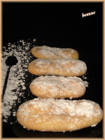 Biscuits à la cuiller (1)