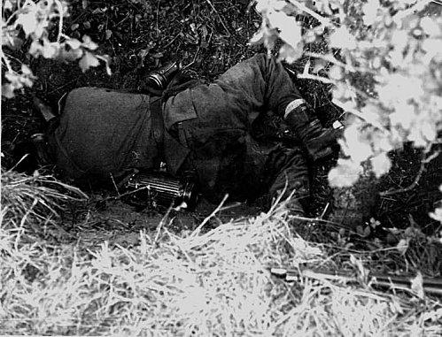 La bataille des Haies. 13 juin/24 juillet 1944. 72104301