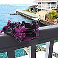 Le bikini rose et gris