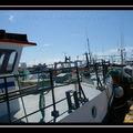 Photos publiées dans le Petit Futé Finistère 2008/2009