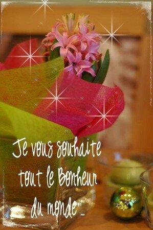 Copie_de_Janvier_2007_024