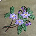 Fleur juin violette