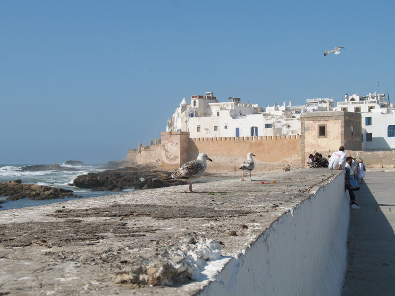 Essaouira (29)