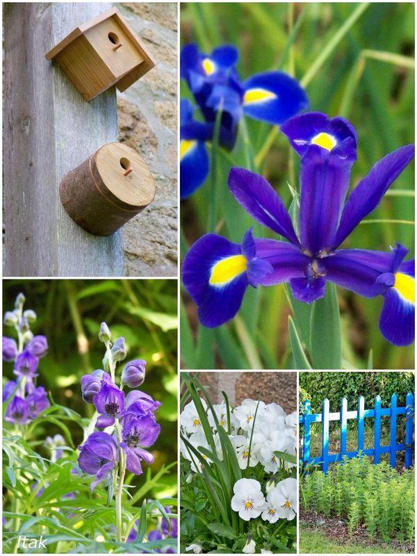 mai_au_jardin