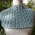 L'avant-dernier test-knit de carofil !