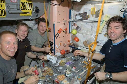 ISS-20_Crew_members_share_a_meal_at_a_galley_in_the_Unity_node_of_the_International_Space_Station-1