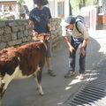 Quotidien au Ladakh