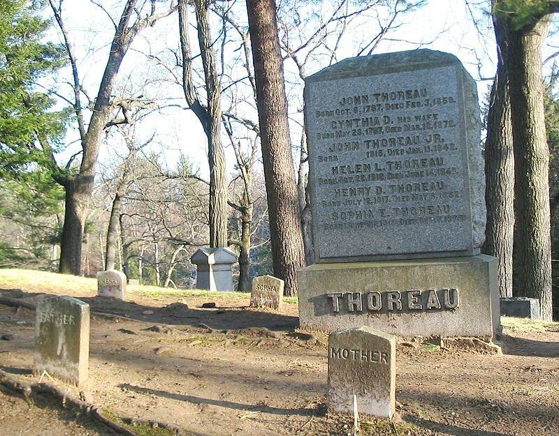 Photo-tombe-Thoreau-gravesite-cimetière-Sleepy-Hollow