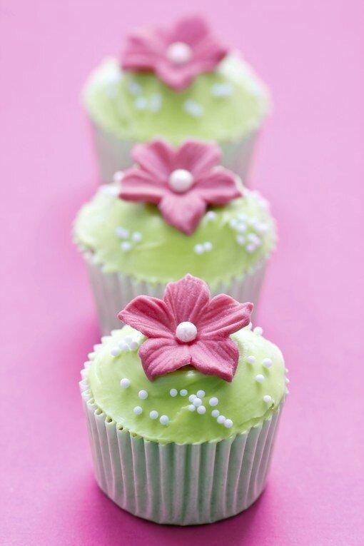 794008_8MCPEAKNLMRLN8UTKT4XPARM1AVUS1_cupcake-vert-fleur-rose_H093843_L