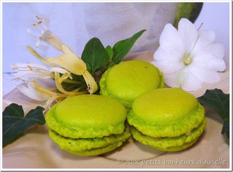 Macarons (2)
