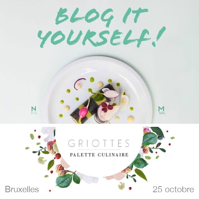 blog-it-yourself-atelier-griotte_IN
