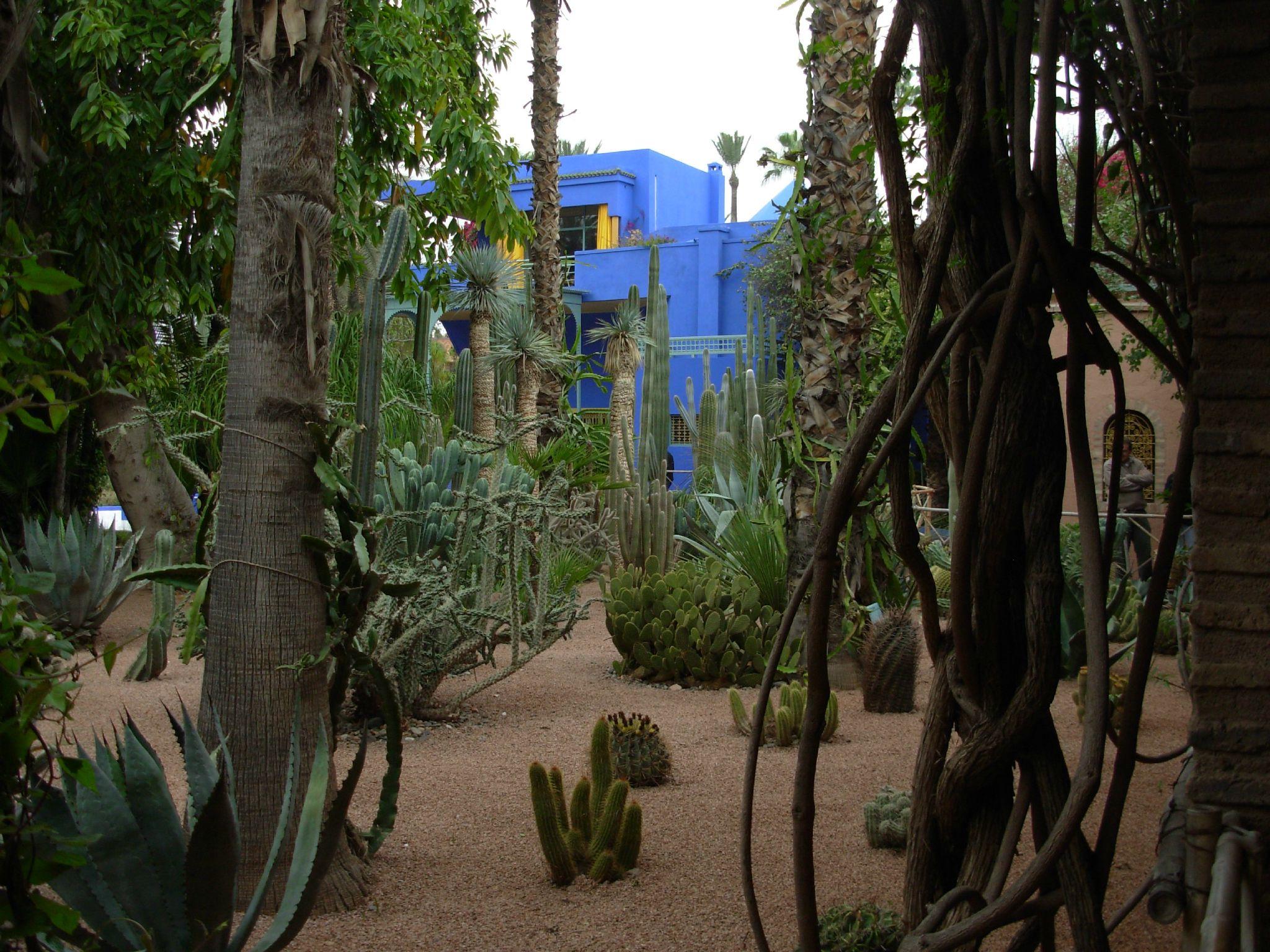 Maroc ... Le jardin 'Majorelle'