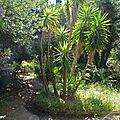 Un jardin planétaire surplombant la méditerranée...