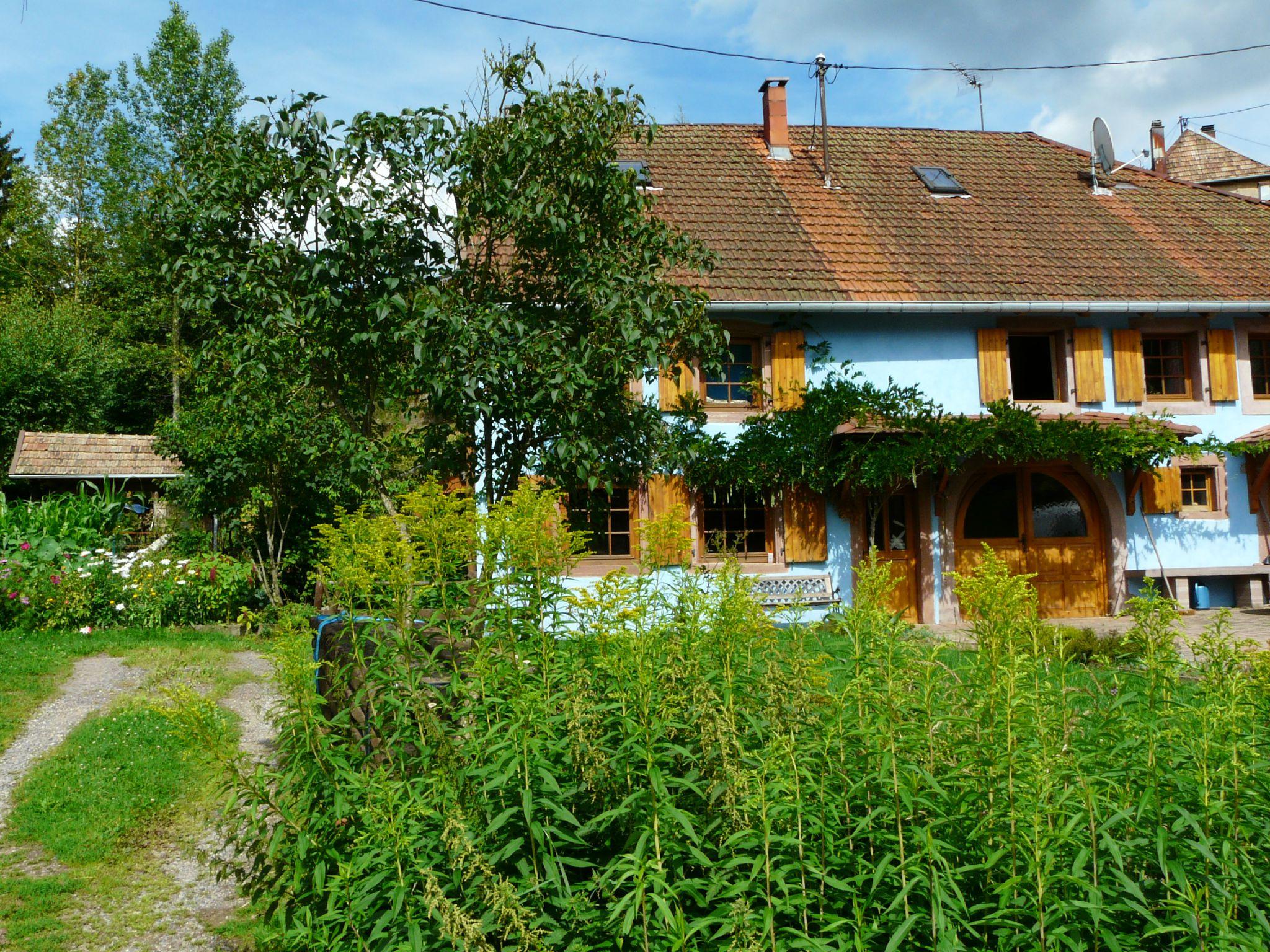 Waldersbach (4)