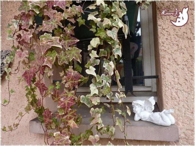 Transformations au jardin du bonheur mon jardin du for Jardin bonheur 2015