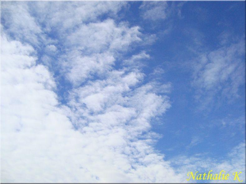 _c_LNK_le_12_novembre_2010_027_copie