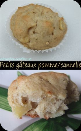 Petits_g_teaux_pomme_cannelle_021_canal