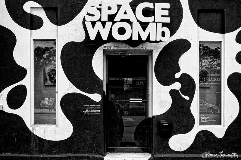 SpaceWomb 800