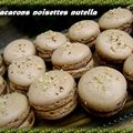 Macarons 100% noisettes 200% nutella 300% faciles!