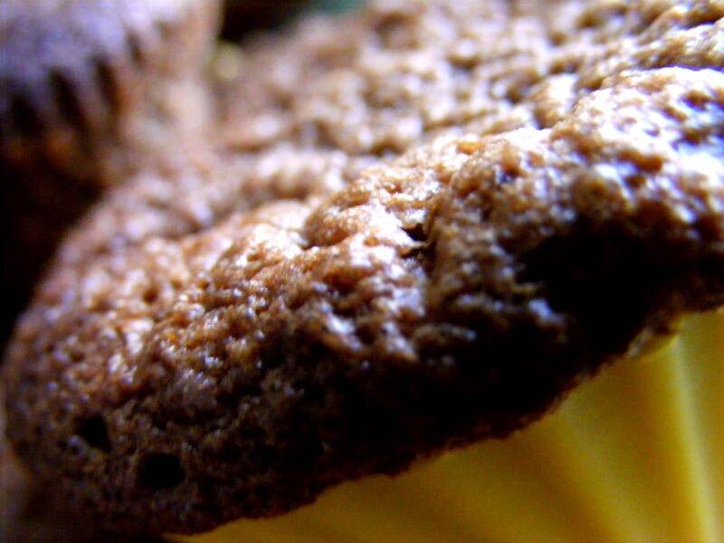 muffins cafe choco