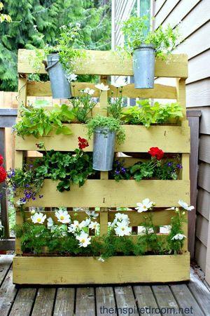 RECUP garden (3)