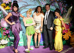 Screening_Disney_Tinker_Bell_Great_Fairy_Rescue_dvG5G5oE6Gll