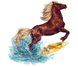 cheval_surf