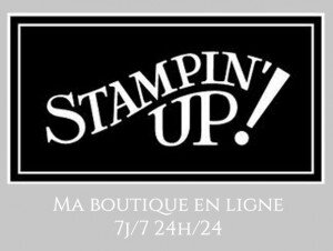 Ma-boutique-en-ligne-Stampin Up