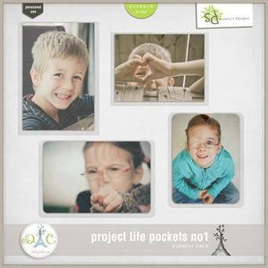 sd_ProjectLifePocketsno1_Preview