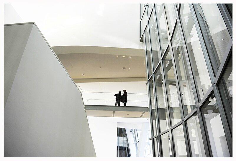 Fondation Louis Vuitton 24
